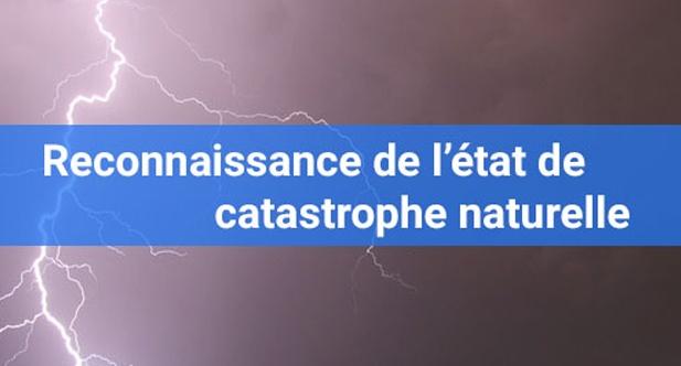 Image reconnaissance de l'état de catastrophe naturelle