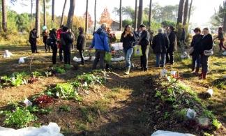 Le jardin de la permaculture