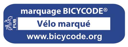 Logo BICYCODE.jpg